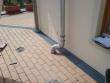 Balkon- durchführung